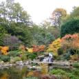 לונדון היא אחת הערים הירוקות ביותר בעולם: כמעט בכל פינה גינה מטופחת, פארק שלו, תעלת מים או אגם ברבורים. בכל עונות השנה הם תמיד הכי יפים בעיר הפארק הגדול והמפורסם […]