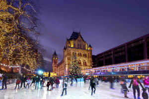 NHM Ice Rink 2013 image smaller